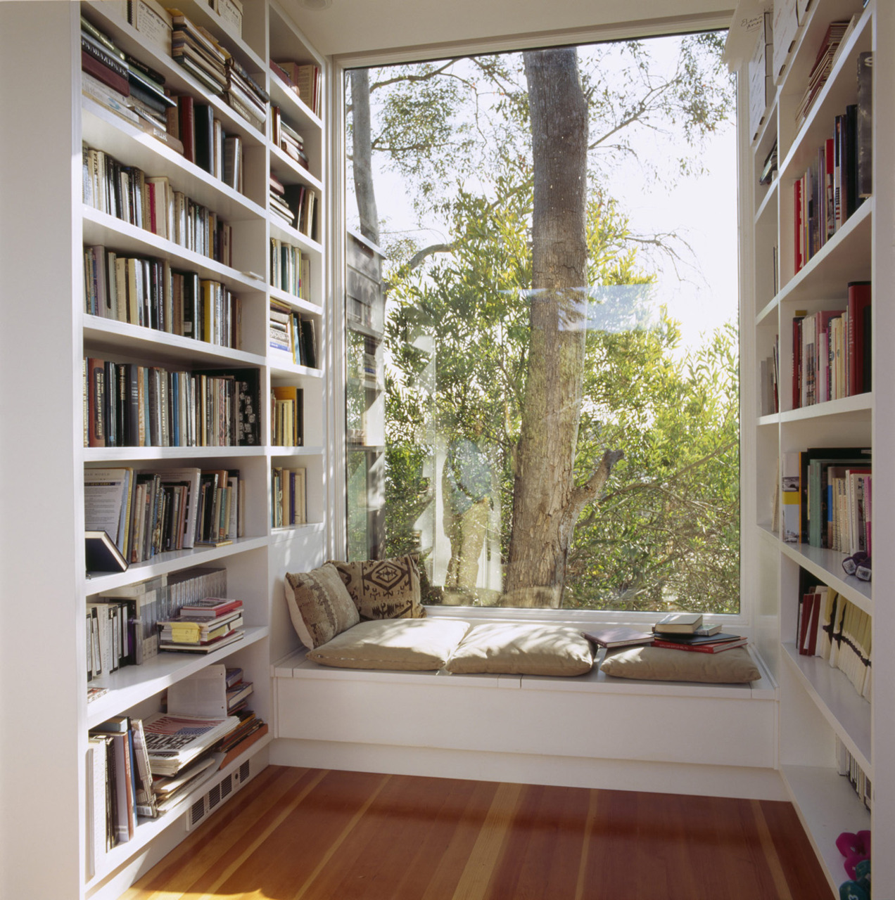 Book essay glass into looking reading wood world