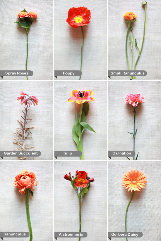 Wedding Flowers Names A Bunch Of Decorator S Notebook