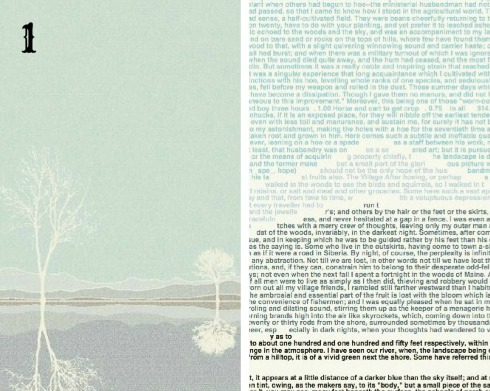 Book poster made from words Litographs1