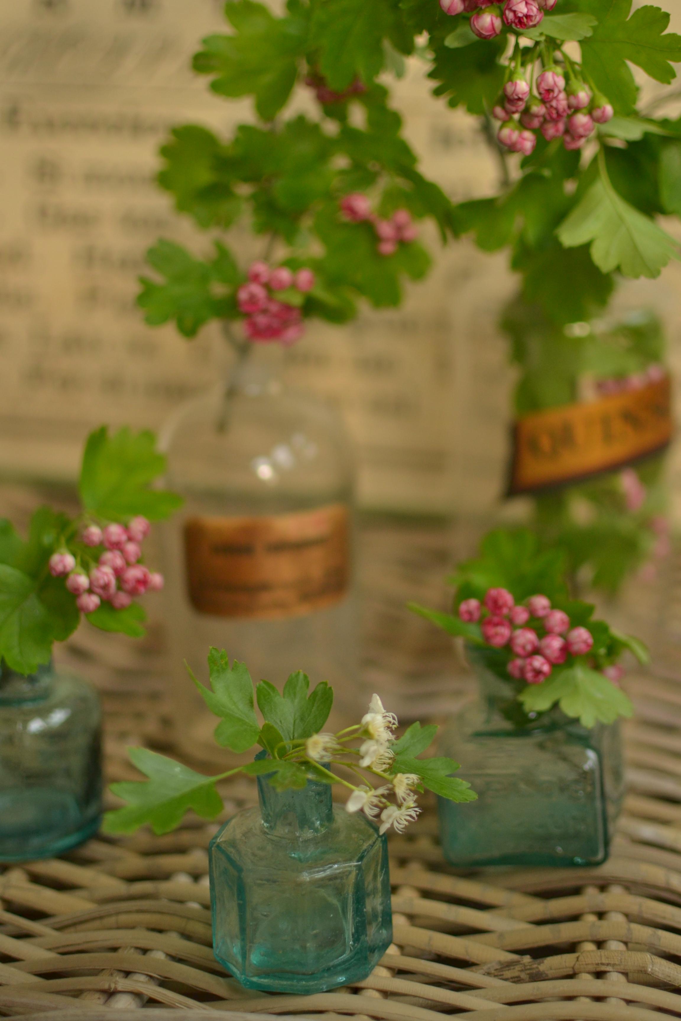 flowers in old glass bottles