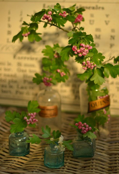 flowers in vintage pharmacy bottles