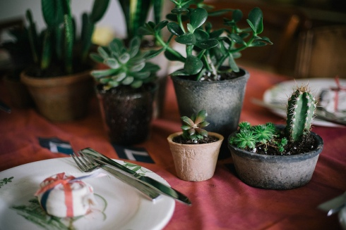 cacti table centrepiece