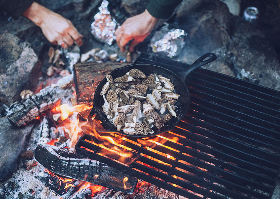 mushrooms cooking on open fire WLL
