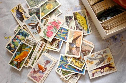 pretty floral cigarette cards