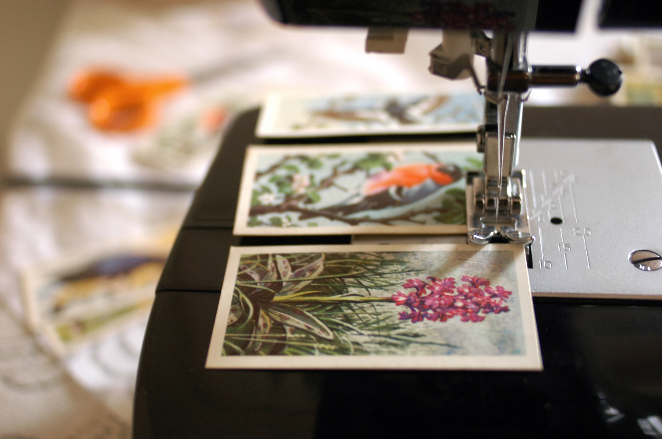 stitching cigarette cards to make a garland
