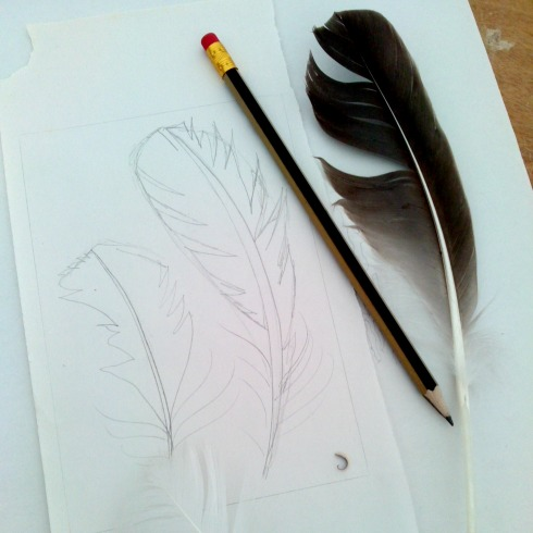 sketch of feathers
